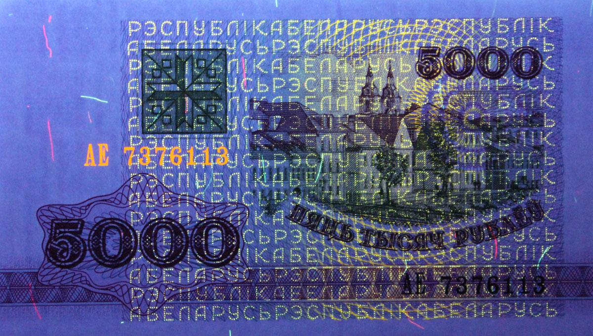 Аверс банкноты Беларуси 5000 рублей 1992 года в УФ-спектре